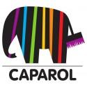 Tynki i farby Caparol